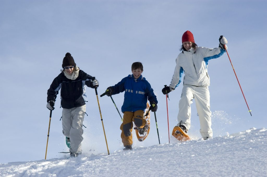 Activities in Vaujany: Snowshoeing is available at Vaujany